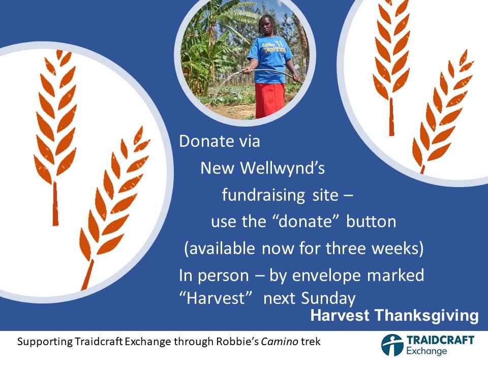 Harvest Thanksgiving - New Wellwynd supports Traidcraft Exchange
